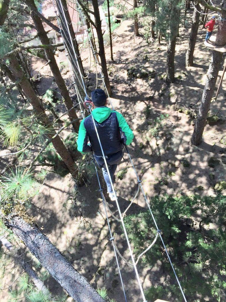 forestal_park_tenerife_challenge_airwalk