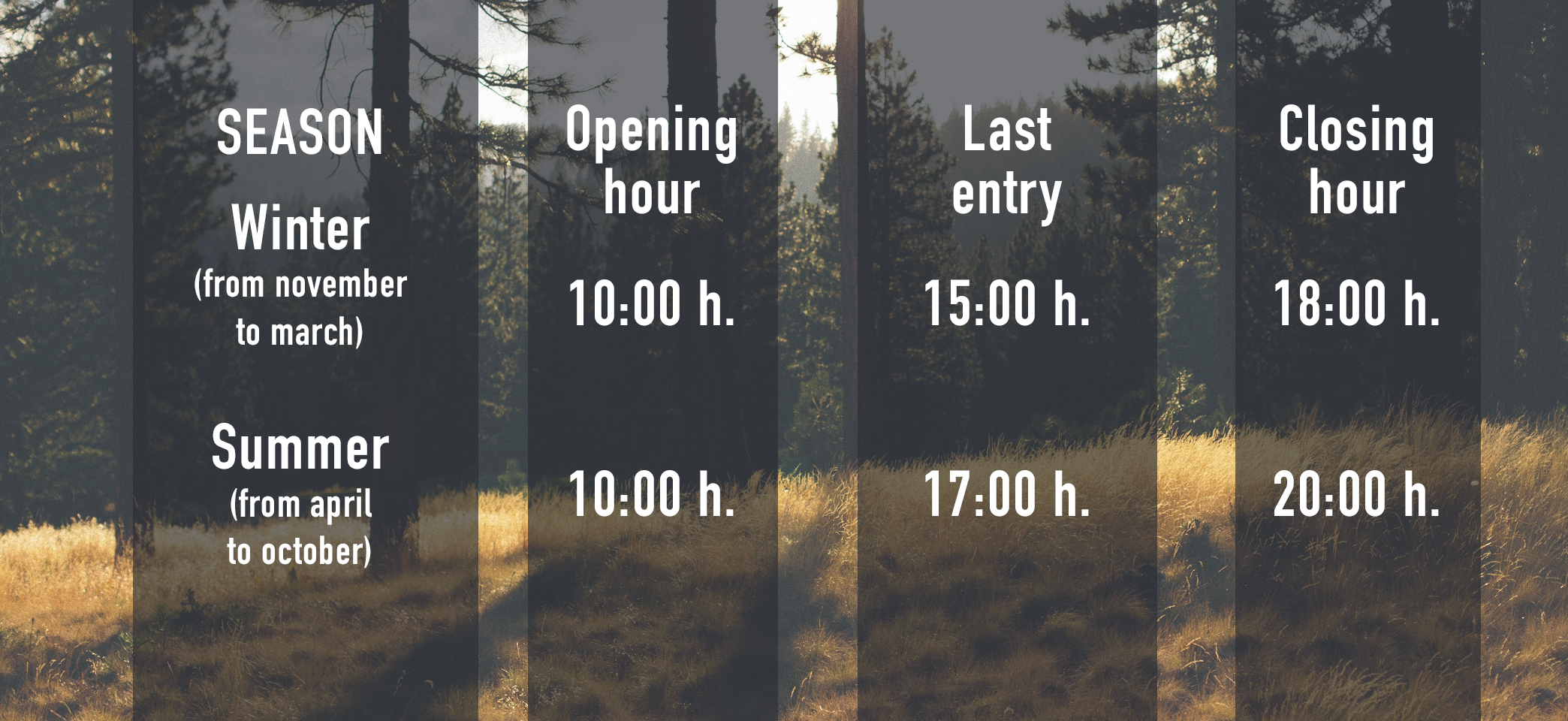 Winter and summer Forestal Park Tenerife opening hours