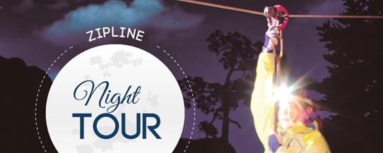 night-tour